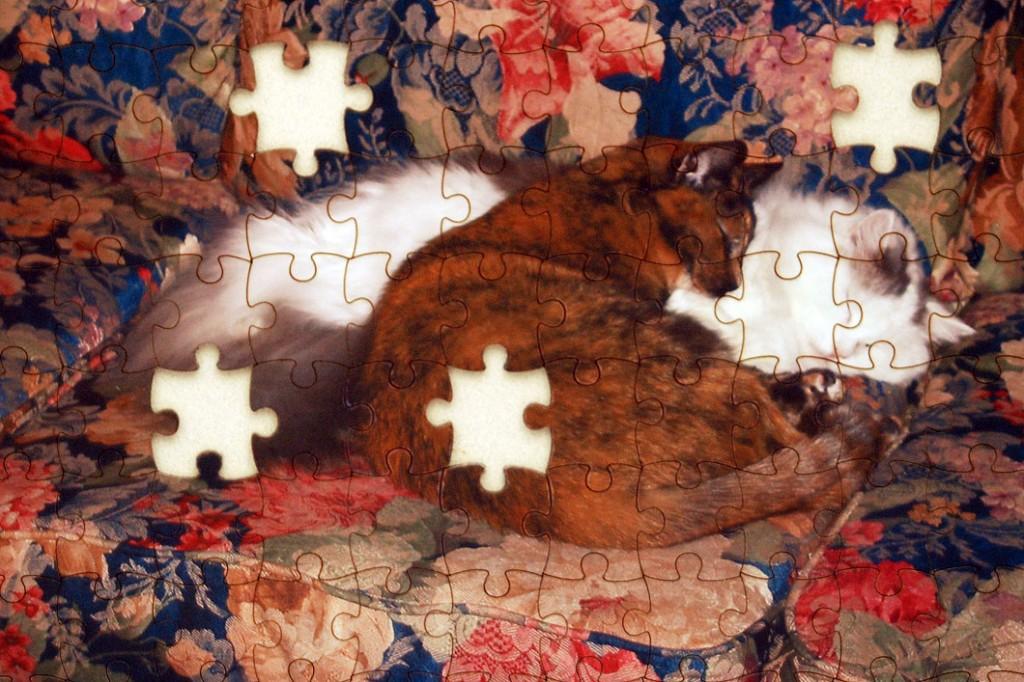 puzzle1060