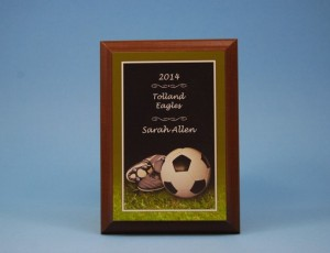 Soccer Plate on Wood Plaque shown engraved